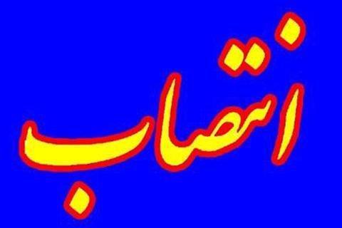 سرپرست دانشگاه سلمان فارسی کازرون منصوب شد